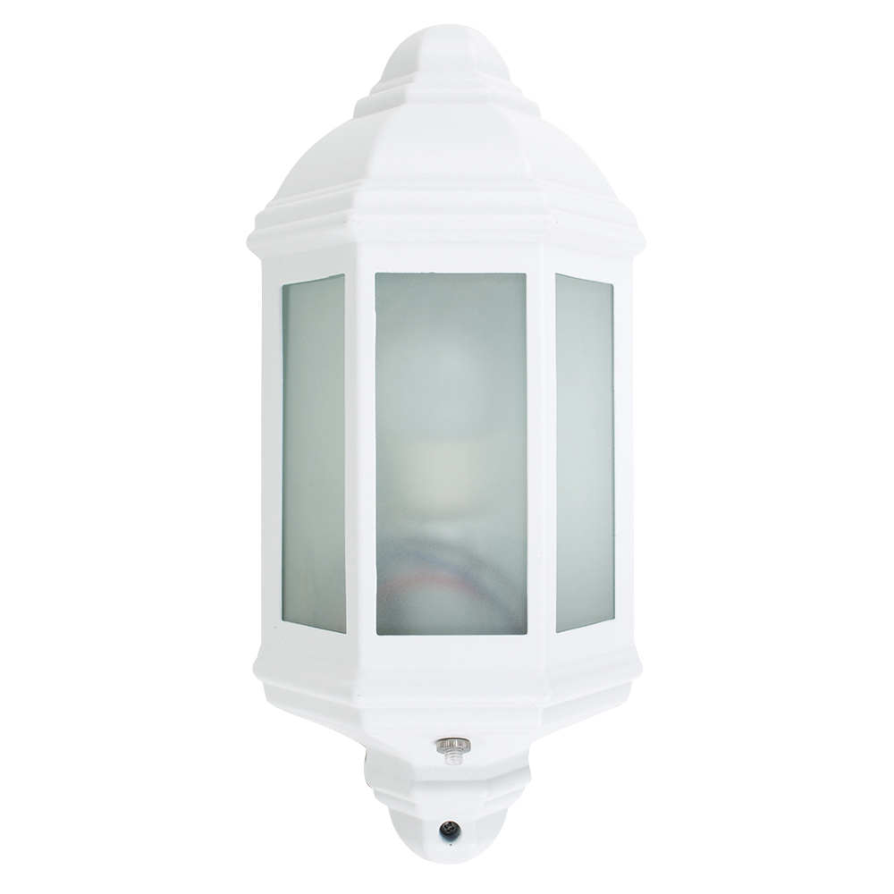 Wiltshire Outdoor Wall Lantern with Dusk 'til Dawn Sensor in Whit